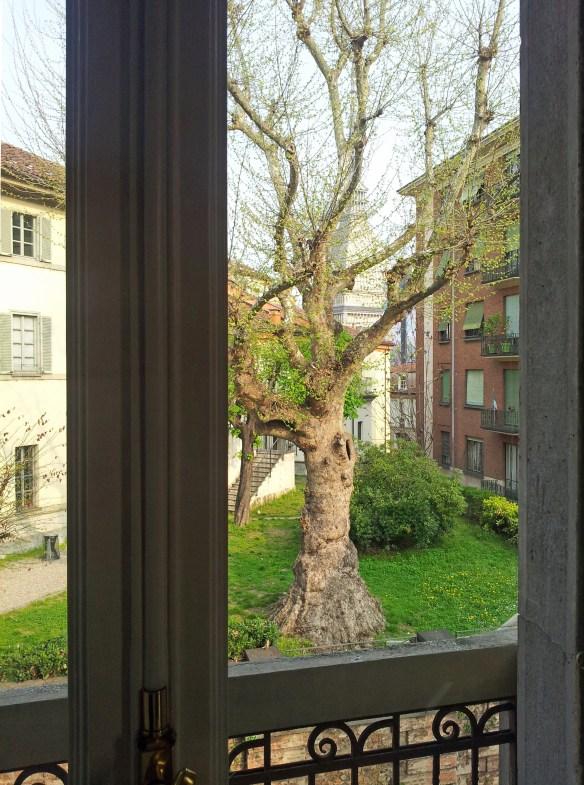 Dalla finestra - F. A. Canavesio (4/2013)