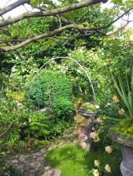 Questo giardino - 10