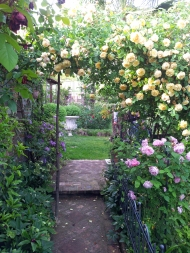 Questo giardino - 11