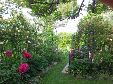 Questo giardino - 12
