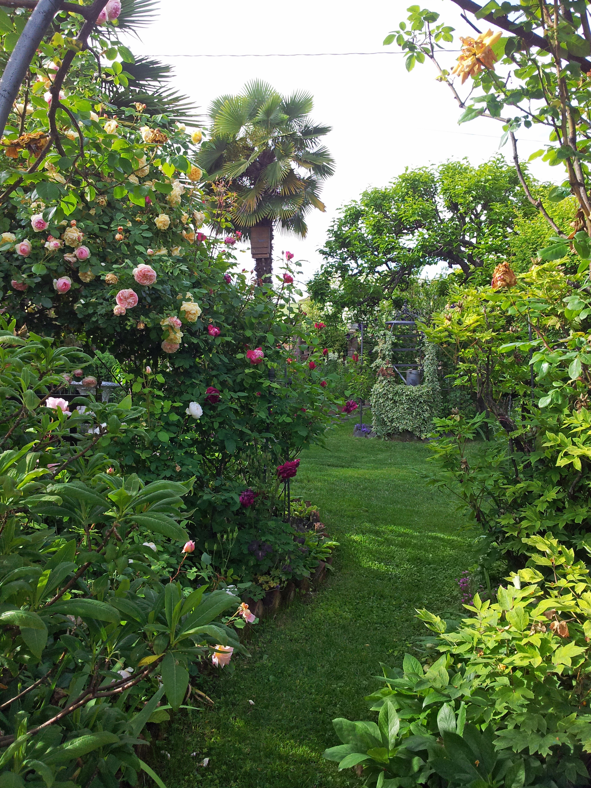 questo giardino 3 franco canavesio blog